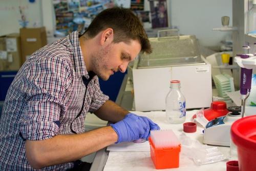 Naše stopa na akademii věd