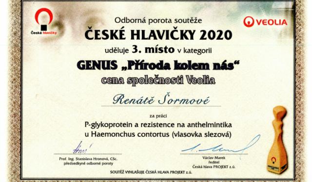Bronz v Českých hlavičkách